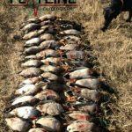 oklahoma waterfowl hunting