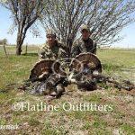 turkeys for hunting